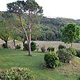 Lower garden @ Antico Borgo di Sugame