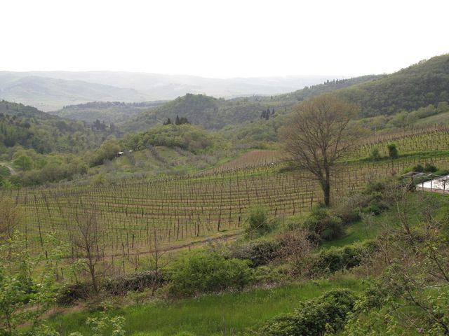 View down the valley @ Antico Borgo di Sugame