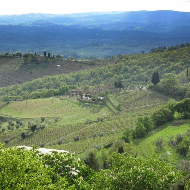 View from tower in Castellini in Chianti