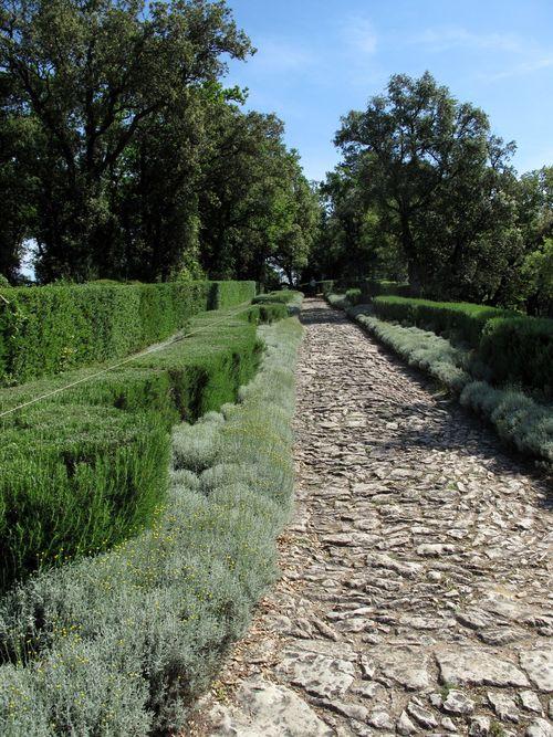 Gardens of Marquayssac - Rosemary hedge - wonderful aroma