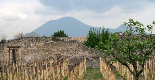 View from the valley of the fugitives to Vesuvius